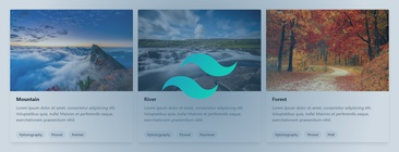 17 Tailwind CSS Card Examples